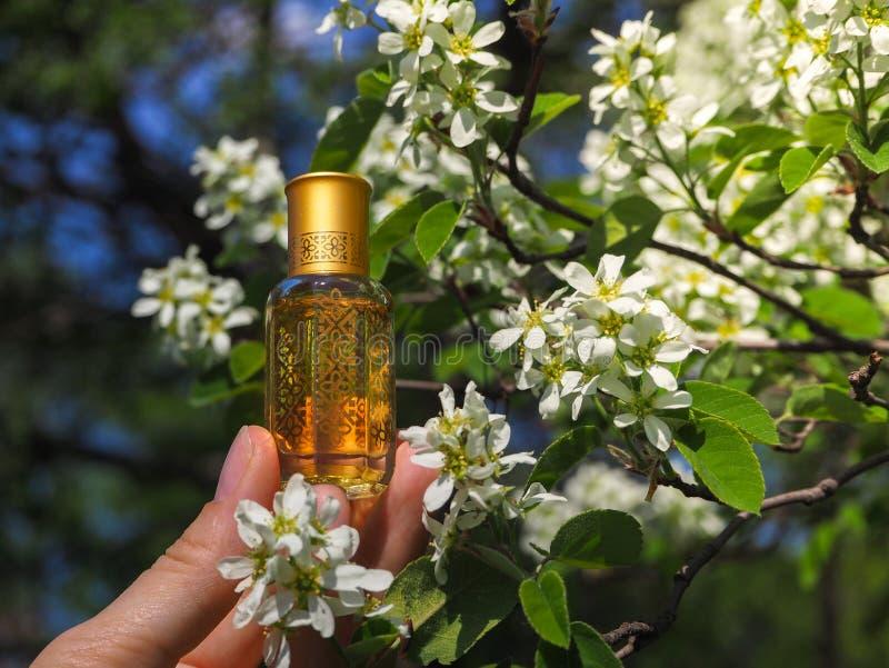 Naturalny olej dla relaksu i błogości Tradycyjny języka arabskiego kadzidło zdjęcia stock