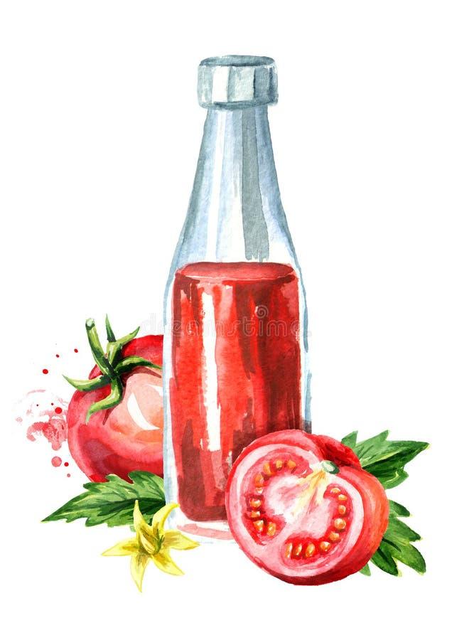Naturalny organicznie pomidorowy ketchup z dojrzałymi czerwonymi pomidorami Akwareli ręka rysująca ilustracja, odizolowywająca na royalty ilustracja