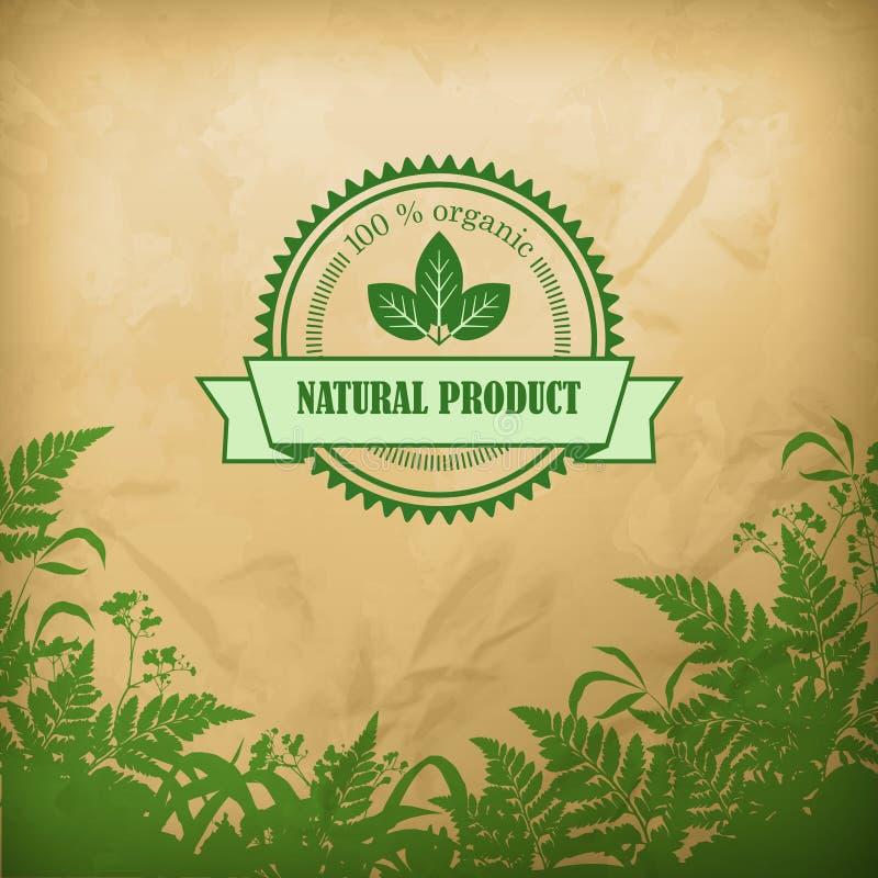 Naturalny Organicznie Ziołowy Wektorowy skład ilustracja wektor