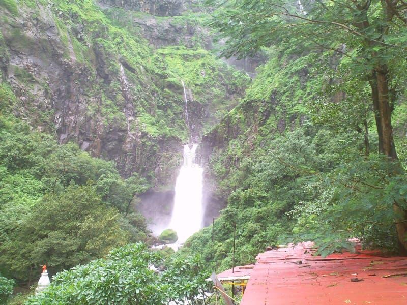 Naturalny piękno w Konkan fotografia royalty free