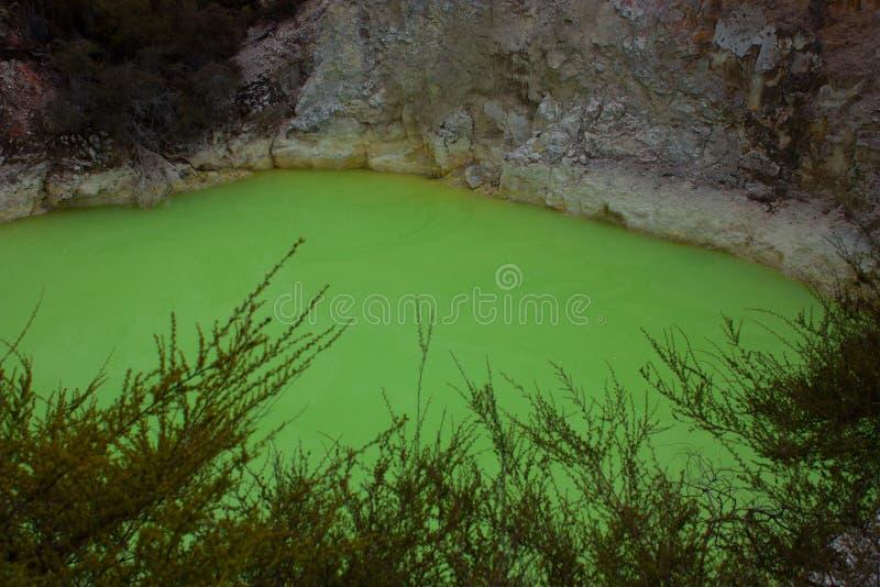 Naturalny powulkaniczny zielony jezioro przy Wai-O-Tapu geotermicznym parkiem w Nowa Zelandia obraz royalty free