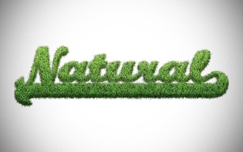 Naturalny słowo ilustracja wektor