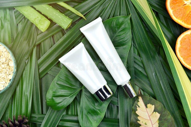 Naturalny skincare piękna produktu pojęcie, Kosmetyczni butelka zbiorniki na zielonym ziołowym liścia tle zdjęcia royalty free