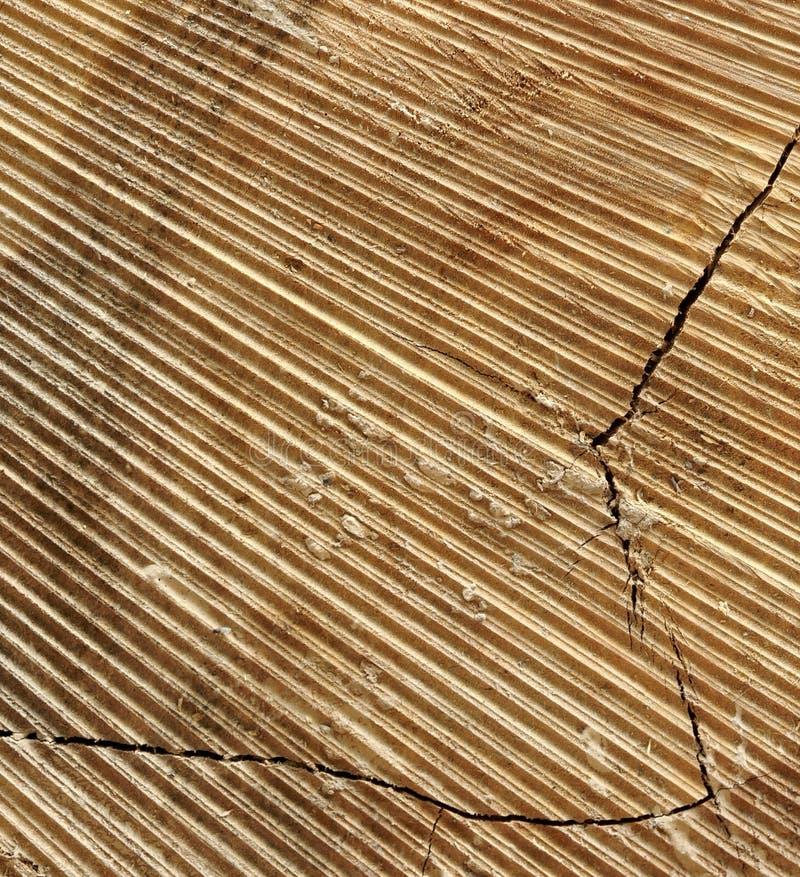 Naturalny Stary drewno adry beli kwadrata ramy tekstury zakończenie obrazy stock