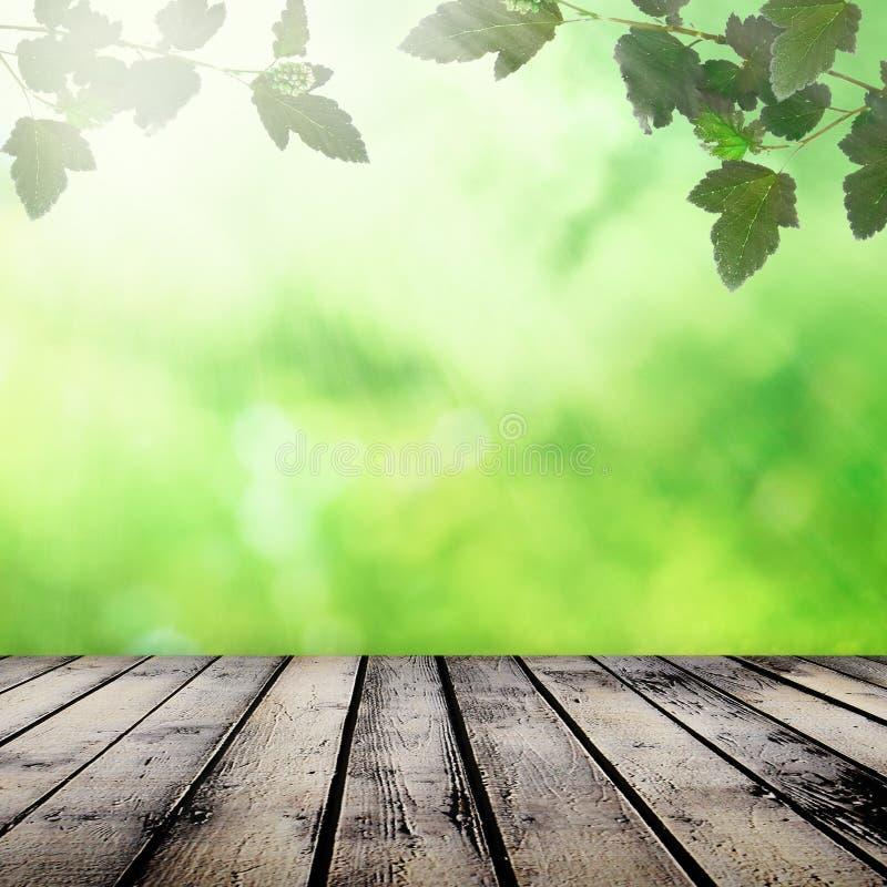 Naturalny tło zdjęcia stock