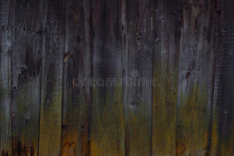 Naturalny tło drewniane deski przerastać z mech na jeden stronie zdjęcia stock