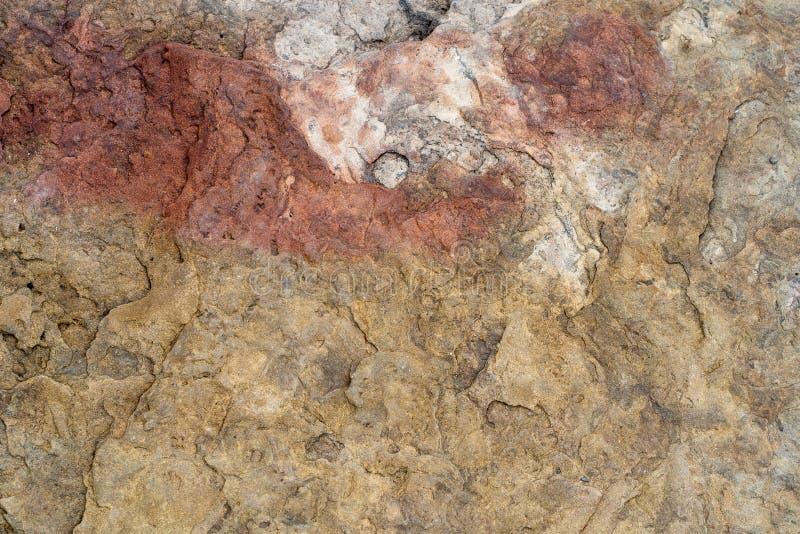Naturalny t?o Tekstura łupku kamień z korodowanie wzorem fotografia royalty free