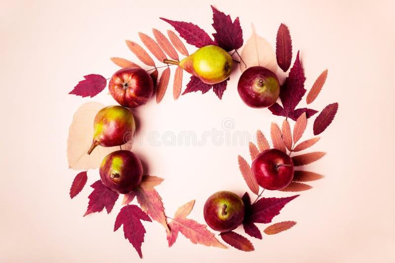 Naturalny wianek susi menchia liście, bonkrety na różowym tle i Jesień żniwa pojęcie zdjęcie royalty free