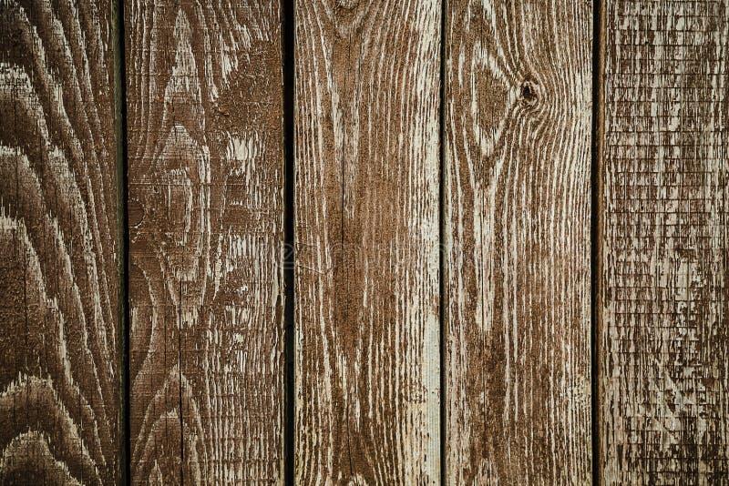 Naturalny wnętrze z drewnianymi ściennymi panel fotografia stock