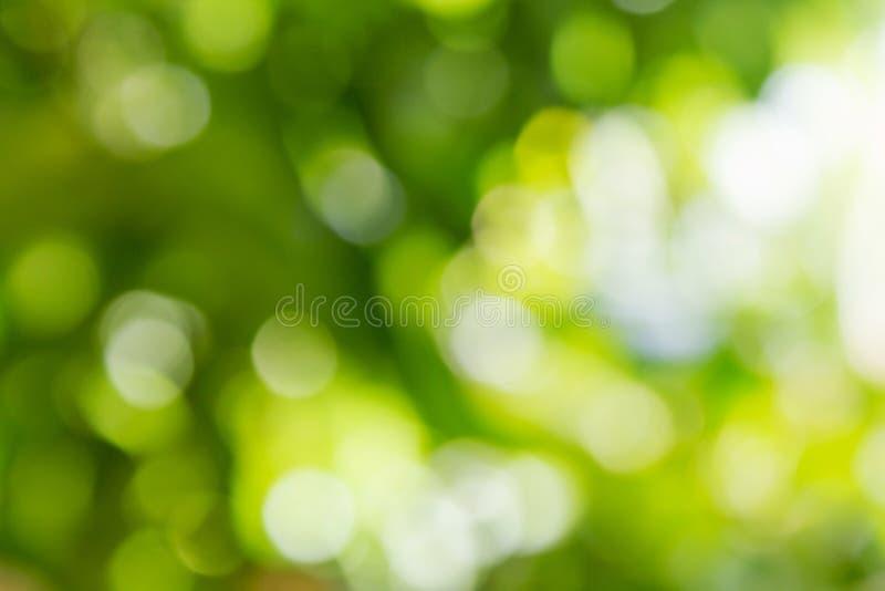 Naturalny zielony Bokeh tło, Abstrakcjonistyczni tła obrazy royalty free