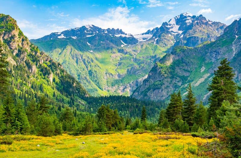 Naturbakgrund med berg, f?lt av l?sa blommor och bl? himmel arkivbild