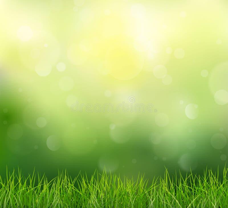 Naturbakgrund med gräs och Bokeh, vektorillustration vektor illustrationer