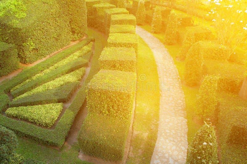 Naturbana igenom i den tropiska trädgården royaltyfria bilder