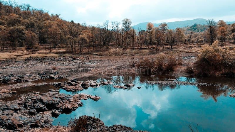 Naturbild mit kleinem waterbody lizenzfreie stockbilder