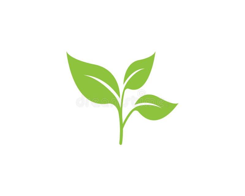 Naturblattikonenlogo-Vektorschablone stock abbildung