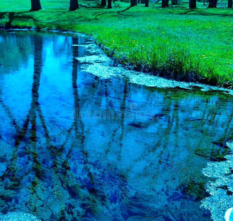 Nature& x27; красота s стоковое фото rf