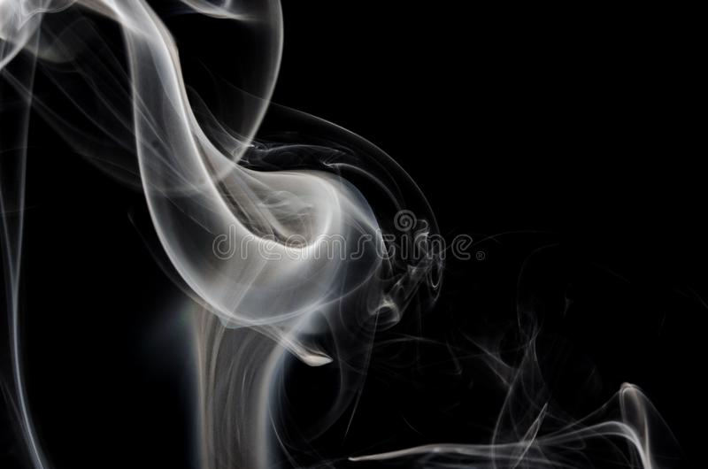 Nature Abstract: The Delicate Wisp of Smoke Forming a Calla Lily stock photos