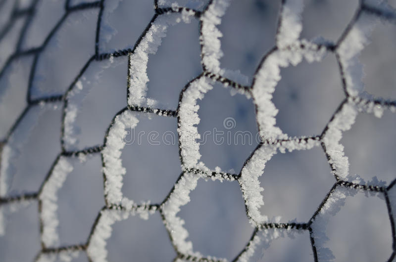 Nature Abstract: Wire Fencing Frost Covered and Freezing in Winter. Nature Abstract: Wire Fencing Frost Covered and Freezing in the Cold Winter stock photography