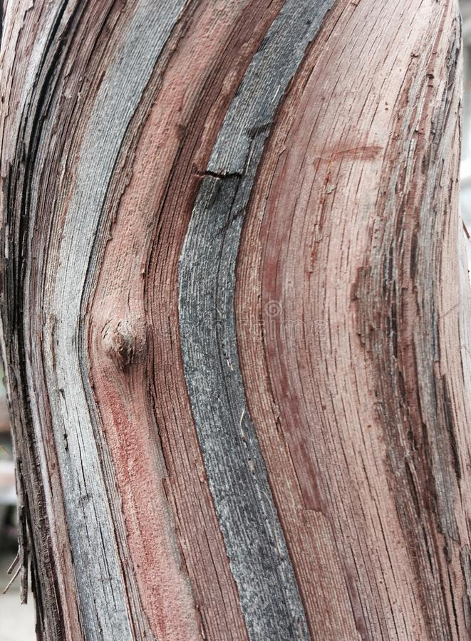 Nature abstraite photos stock