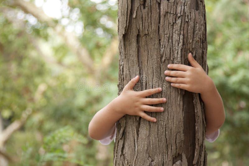 Nature affectueuse photographie stock libre de droits