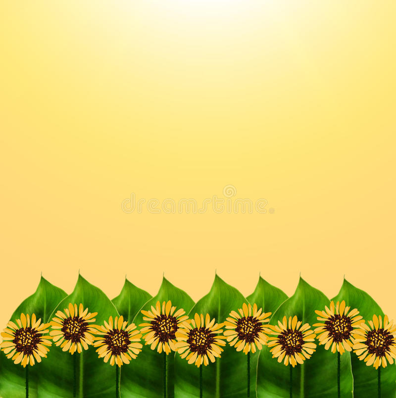 Free Nature And Graphic Garden On Yellow Background. Stock Photos - 47930553