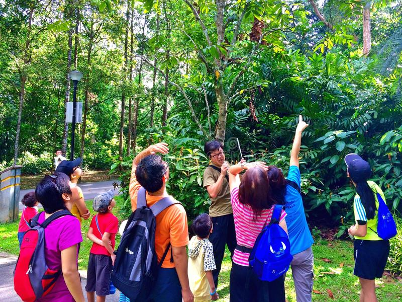 Nature appreciation - Bukit Batok Nature Park, Singapore. A volunteer guide briefing a group of nature lovers about the flora and fauna in Bukit Batok nature stock image