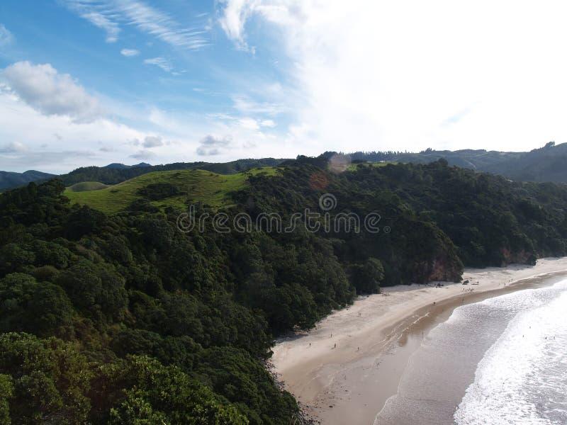 Nature au Nouvelle-Zélande photo libre de droits