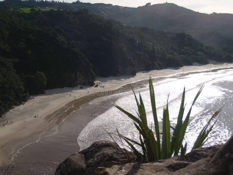 Nature au Nouvelle-Zélande image stock