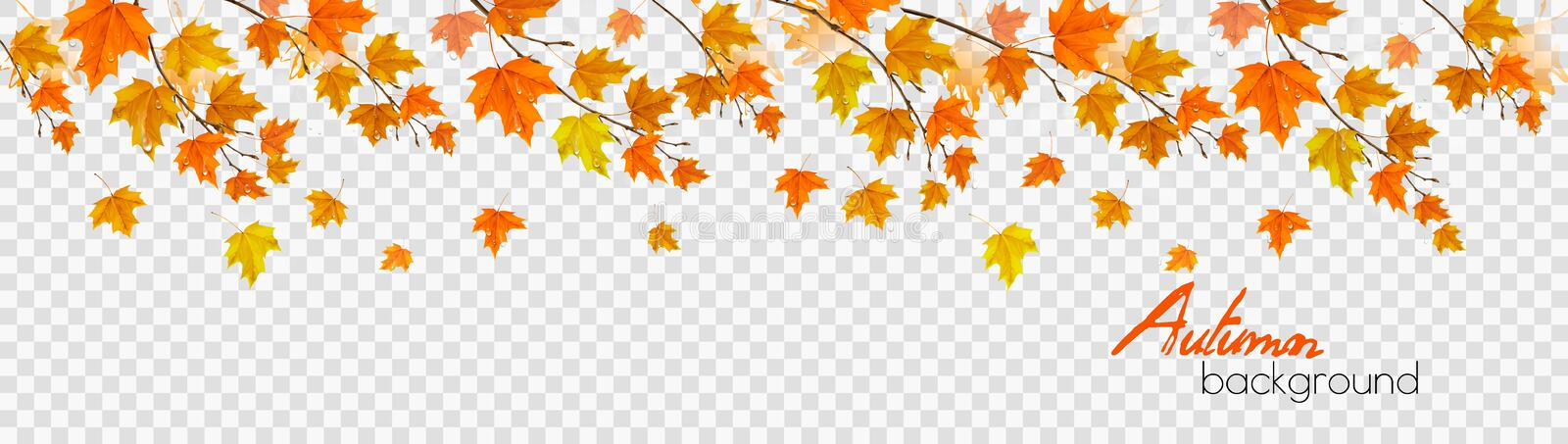 Nature autumn panorama with colorful leaves vector illustration