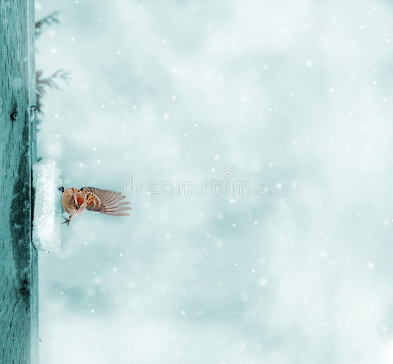 Download Nature background. stock photo. Image of space, snowfall - 28109612