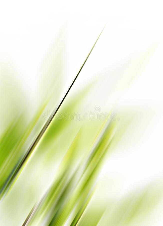 Free Nature Background Royalty Free Stock Photography - 9990707