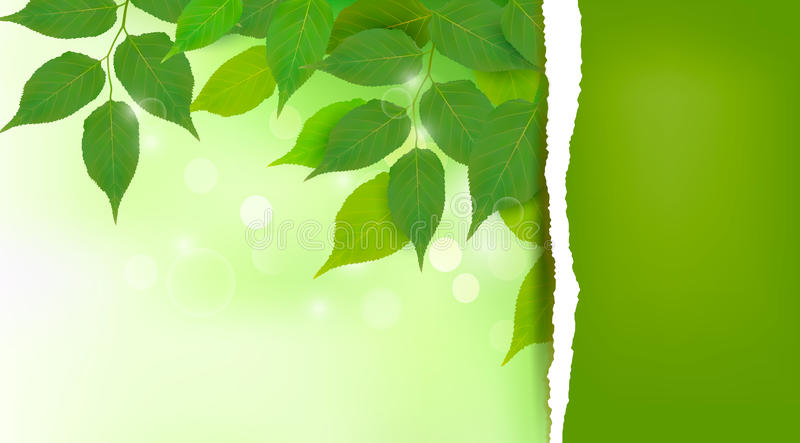 Nature background with fresh green leaves stock illustration
