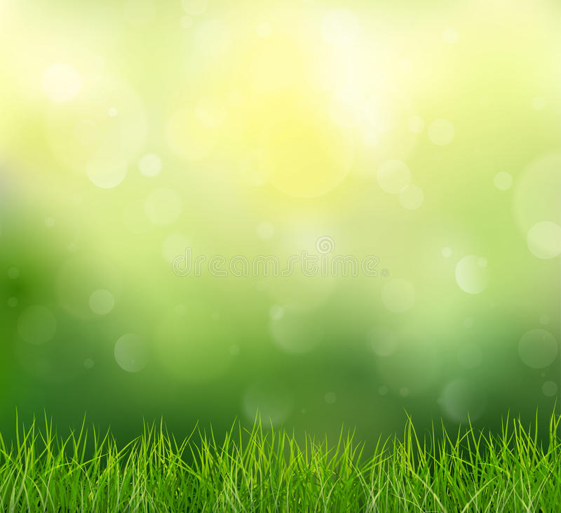 Nature Background With Grass And Bokeh, Vector Illustration.  vector illustration