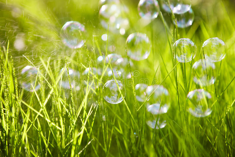 Nature. Background. Grass with soap bubbles. royalty free stock photography