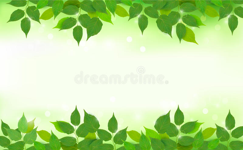 Nature background with green fresh leaves royalty free illustration