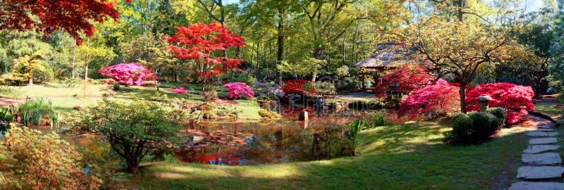 Nature background panorama stock photography