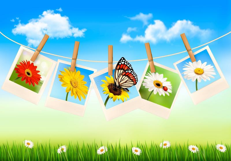 Nature background with photos of flowers and a but stock illustration