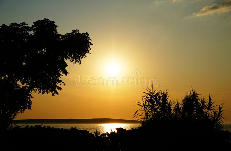 Shiny golden sundown on the sea coast framed with black silhouette of the plants and trees royalty free stock images