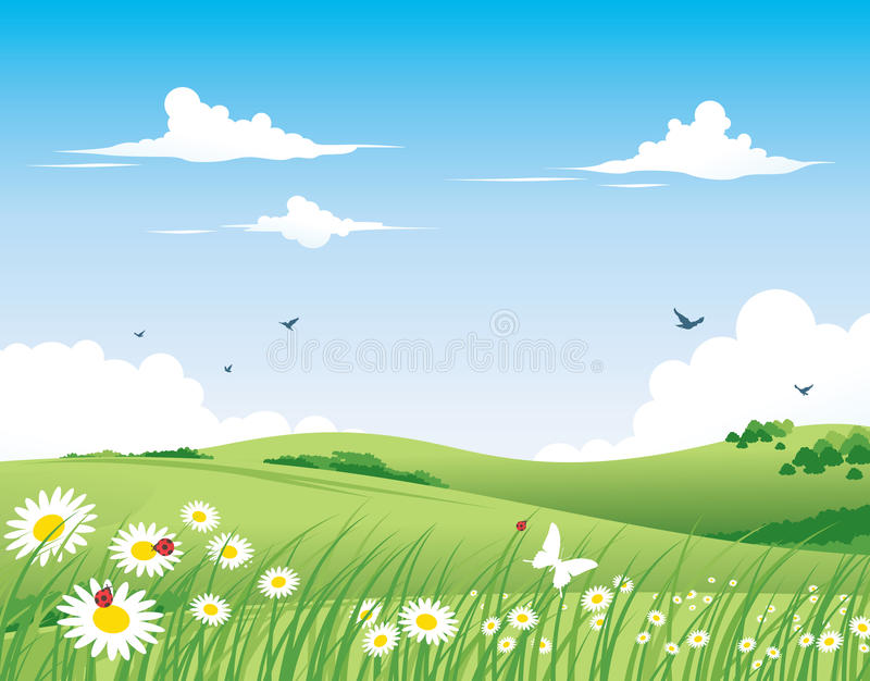 Nature Background - Spring Royalty Free Stock Image