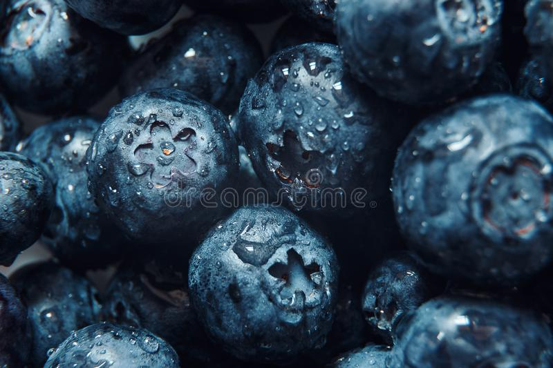 Nature background. Summer, spring concepts. Fresh blueberry background. Macro view of abstract nature texture and background organ stock image
