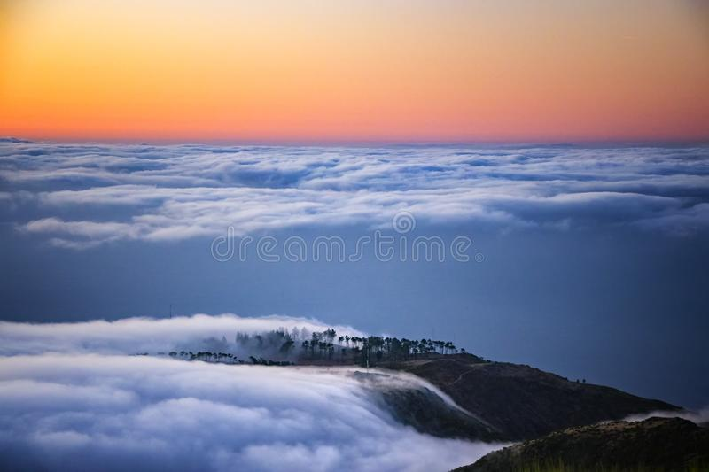 Nature background with sunrise over clouds. It is on the top of Pico do Arieiro mountain, Madeira island, Portugal. The trees are stock image