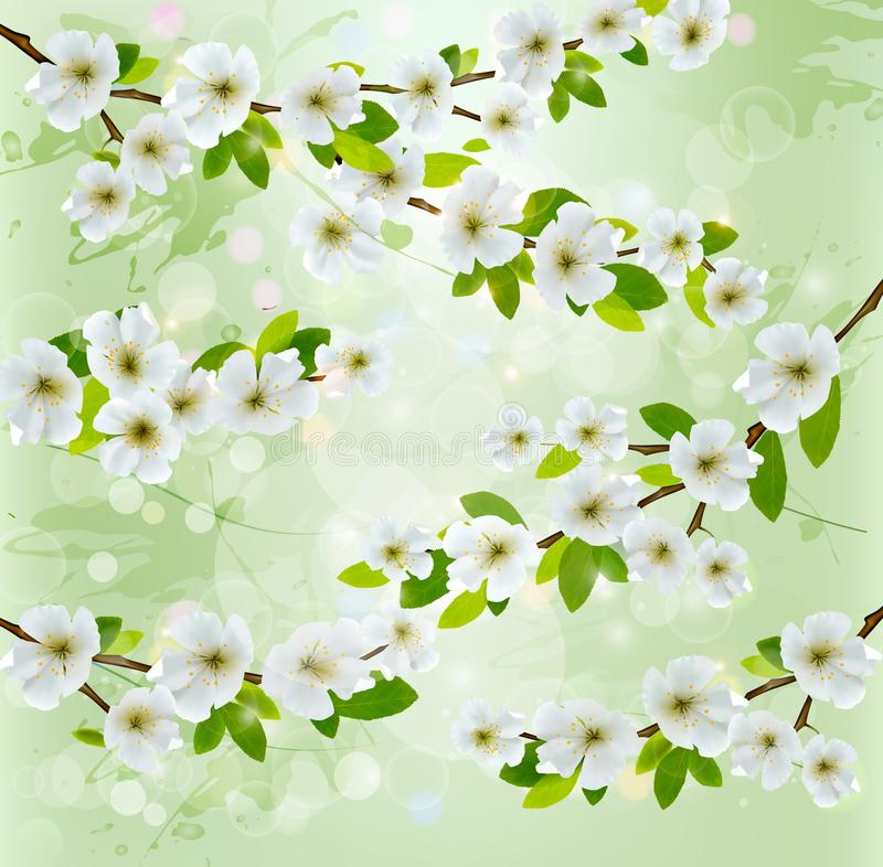 Free Nature Background With Blossoming Tree Branches. Royalty Free Stock Photography - 31254187