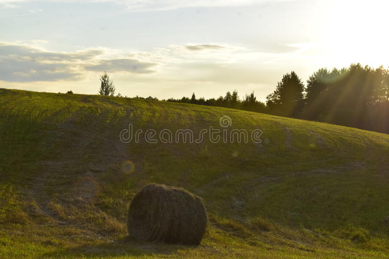 Nature of Belarus stock image