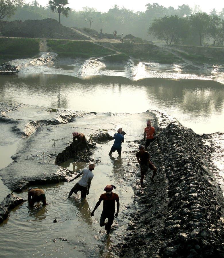 Download NATURE OF BENGAL editorial image. Image of bengal, morning - 83716425