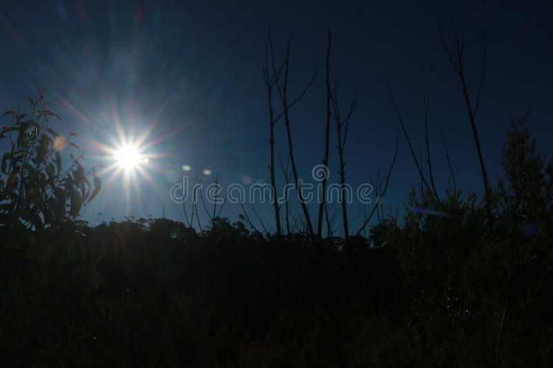 The nature: The Blue Mountain in Australia royalty free stock photo