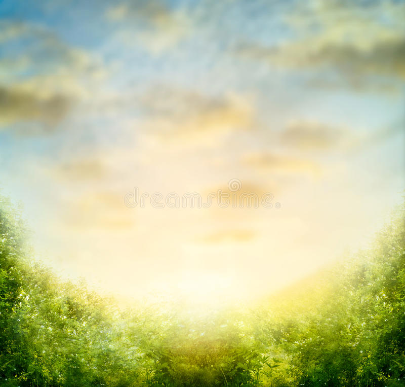 Nature blurred background with sky and green bushes. Leaves royalty free stock image