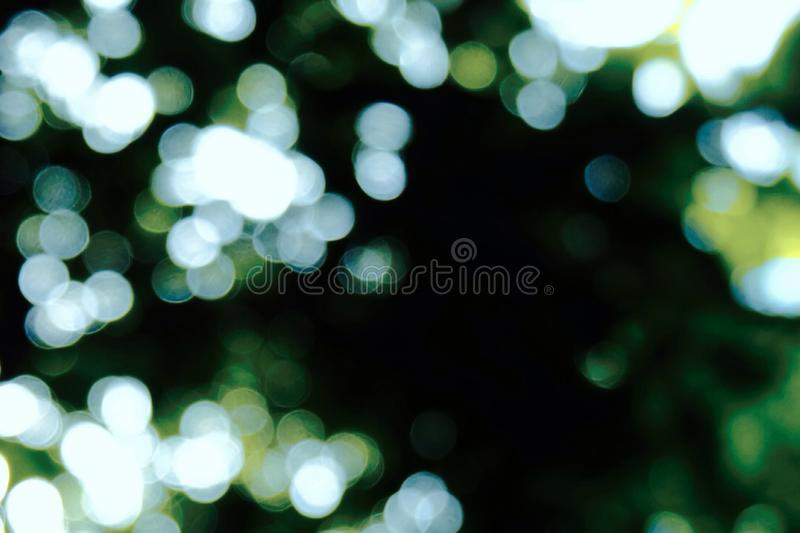 Nature bokeh royalty free stock photography