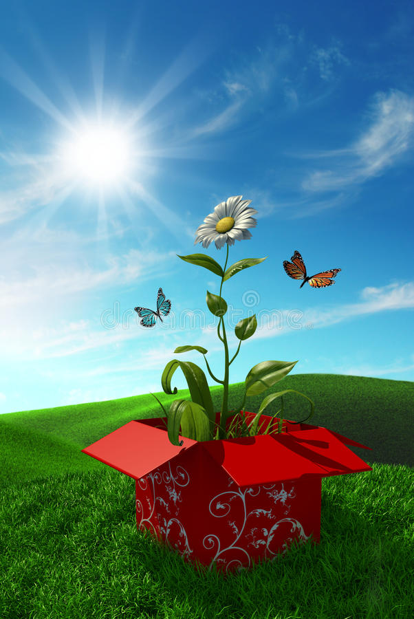 Download Nature from a box stock illustration. Image of grass - 24331637