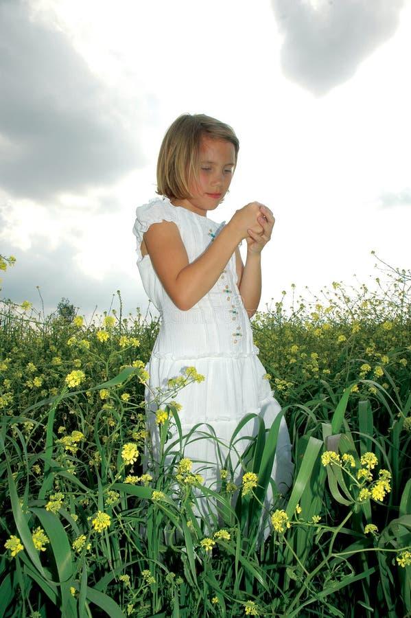 Nature Child royalty free stock image
