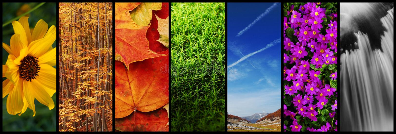 Nature collage royalty free stock images